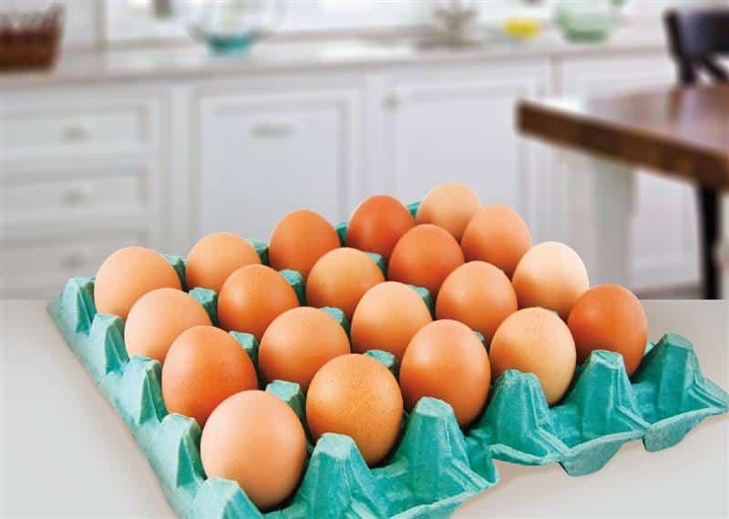 comprar ovo para revender